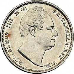 Large Obverse for Sixpence 1831 coin