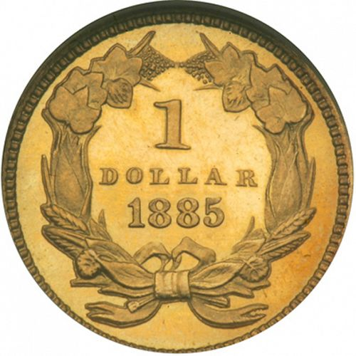 1 dollar - Gold Reverse Image minted in UNITED STATES in 1885 (Large Indian Head)  - The Coin Database